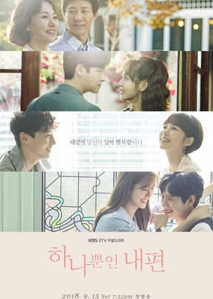 Korean Drama 하나뿐인 내편 / My Only One / Only on My Side / My Only Ally